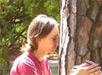 dendroterapia-energetica-cura-con-gli-alberi
