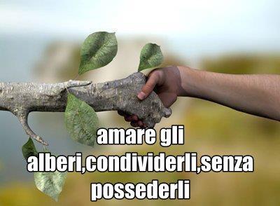 mano albero