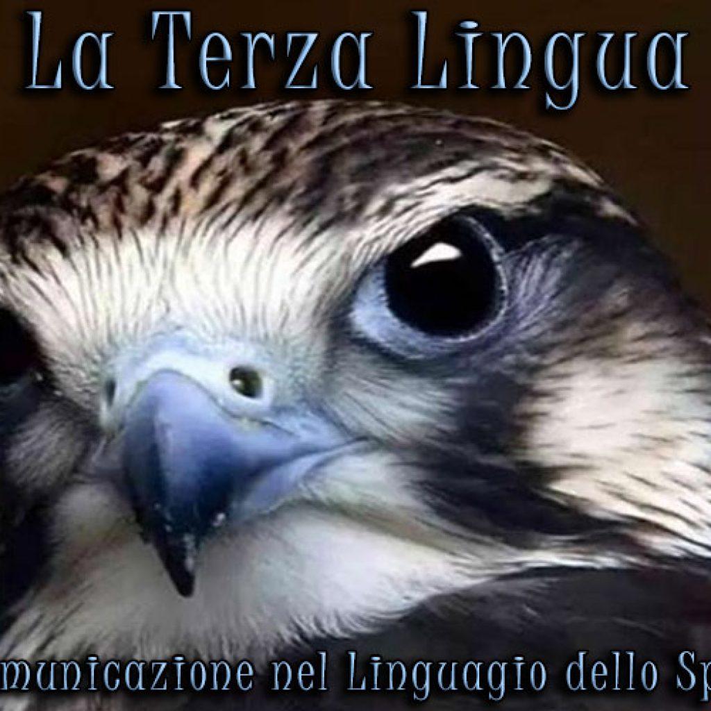la_terza_lingua
