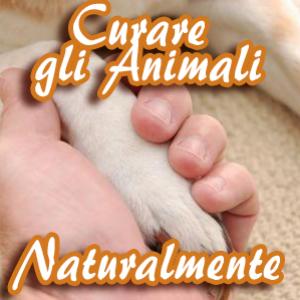 curare_gli_animali_naturalmente