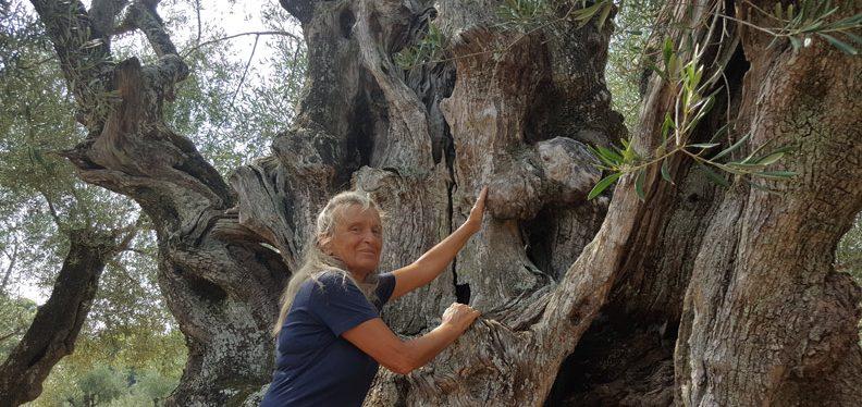 dendroterapia_energetica_alberi_da