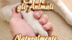 Curare gli Animali Naturalmente con Fiori di Bach, Aromoterapia e Reiki