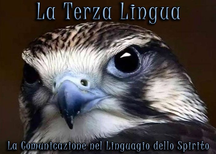 La Terza Lingua: la comunicazione nel linguaggio dello Spirito. Una ipercomunicazione.