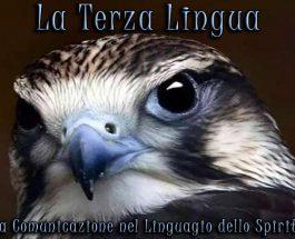 La Terza Lingua: la comunicazione nel linguaggio dello Spirito